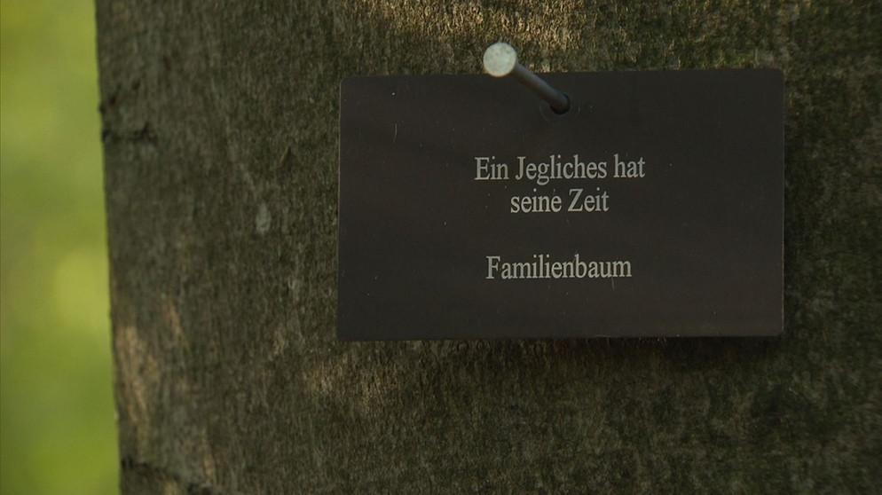 Beerdigung So Kann Man Sich In Bayern Bestatten Lassen Bayern 1