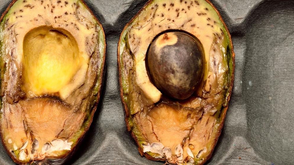 Hat punkte avocado braune Braune Blätter
