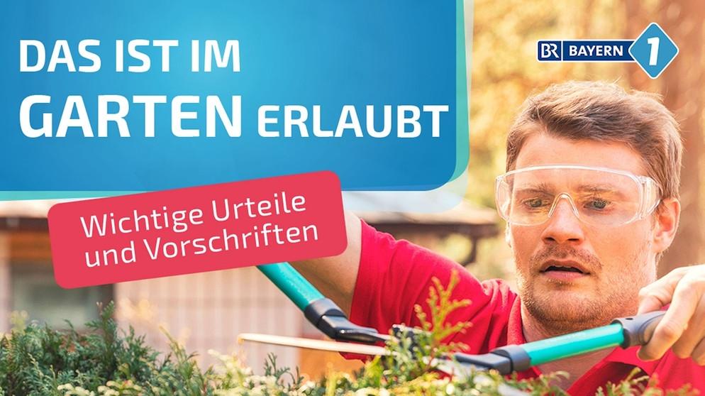 Wann Darf Man Hecken Schneiden Was Ist Im Garten Erlaubt Bayern