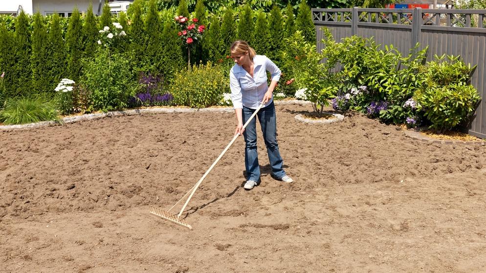 Rasen Säen Stiftung Warentest Welcher Rasen Ist Der Beste