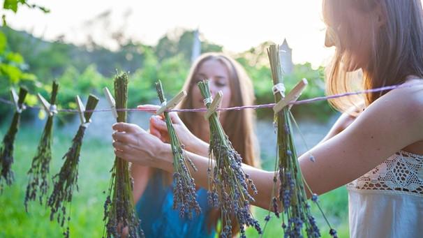 Lieblings Lavendel trocknen: Fünf Tipps, wie Lavendel besonders gut tut #NC_41