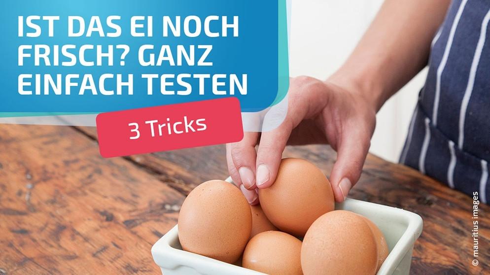 eier testen mit wasser