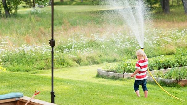 Rasen Richtig Pflegen Diese 6 Mythen über Rasenpflege Sind Falsch