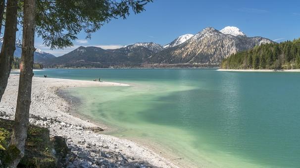 Seen in Bayern : Geheimtipps für die schönsten Badeseen in ...