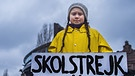 Schülerin Greta Thunberg demonstriert  | Bild: picture alliance/TT NEWS AGENCY