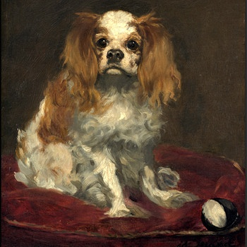 Ein King Charles Spaniel, Edouard Manet (1832 - 1883) | Bild: picture alliance / Liszt Collection | Liszt Collection