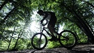 Downhill-Mountainbiker | Bild: picture-alliance/dpa