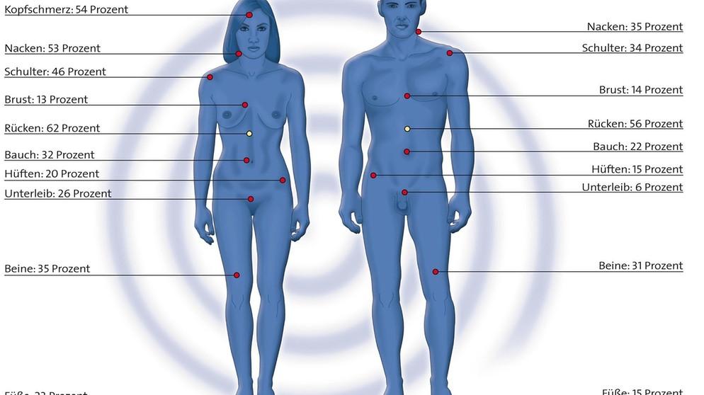 Körperbau der frau | Anatomie der Frau im Unterschied zum Mann. 2020-05-06
