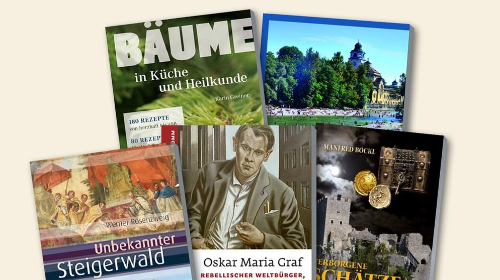Bayerische Bücherschau 2017 1 Bumeders Buchtipps Für Den Sommer