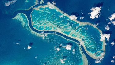 Australiens Great Barrier Reef  | Bild: picture-alliance/dpa