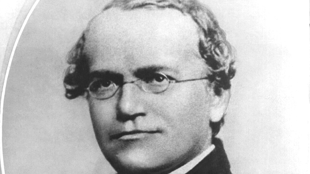 Gregor Mendel | Bild: picture-alliance/dpa
