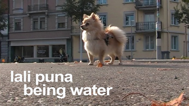 Lali Puna: Being Water | Bild: morrmusic (via YouTube)