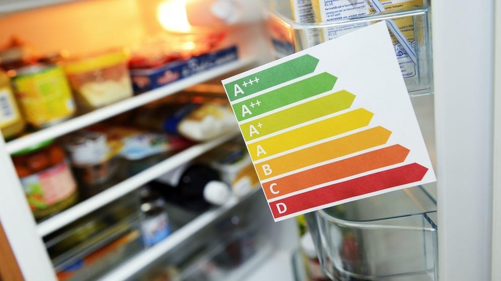 Sparen beim Kühlen Die Gesamtkosten im Blick behalten  -> Kühlschrank Quietscht Beim Kühlen