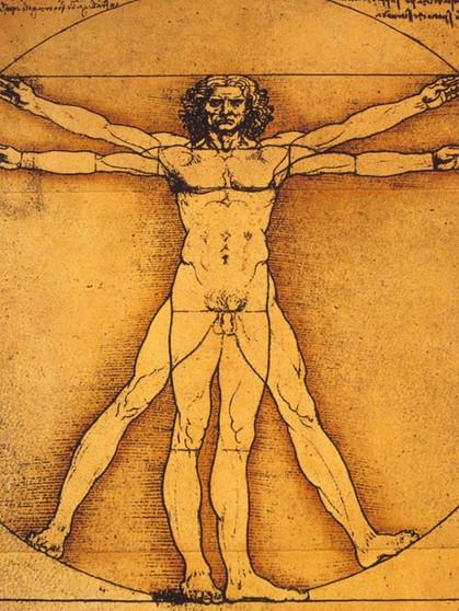 Universalgenie der Renaissance: Leonardos anatomische Studien ...