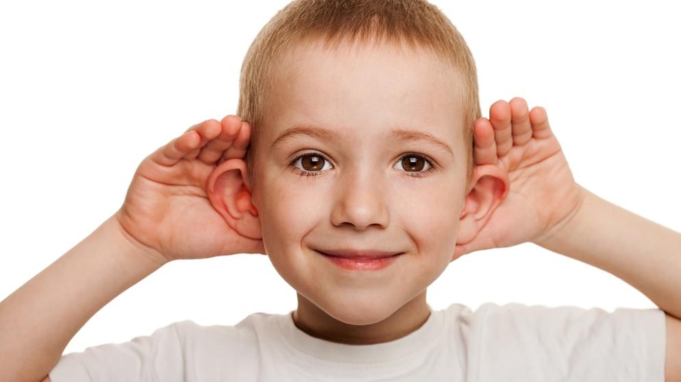 Das Ohr: Wie Hören unser Leben prägt | Mensch, Natur und Umwelt ...