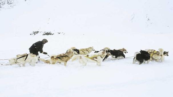 Land der Inuit: Fragen & Antworten   Planet Erde   radioWissen ...