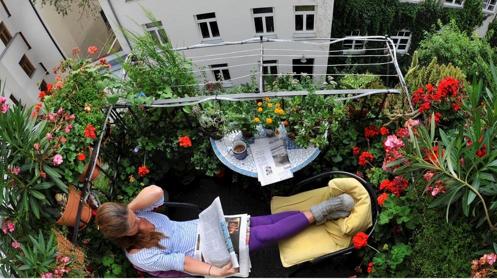 zeit f r bayern lust am duft m nchen duftparadies balkon zeit f r bayern bayern bayern. Black Bedroom Furniture Sets. Home Design Ideas