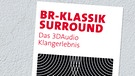 Flyer Surround | Picture: BR
