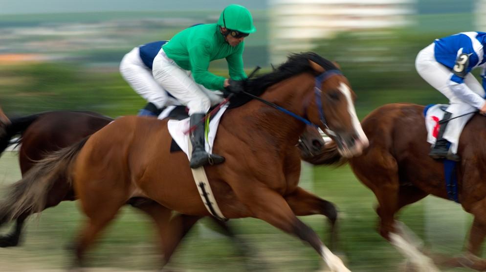 Pferderennen Englisch