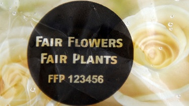 "Rosenstraß mit dem ""Fair-lowers-fair-plants-Siegel"" 
