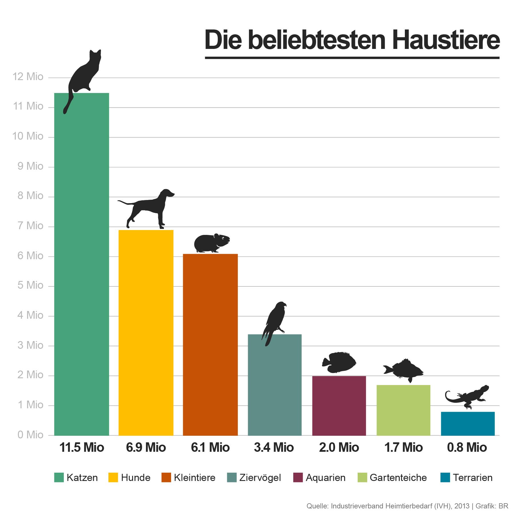 Endearing Coole Haustiere Photo Of Infografik - Die Beliebtesten | Bild: Br/colourbox