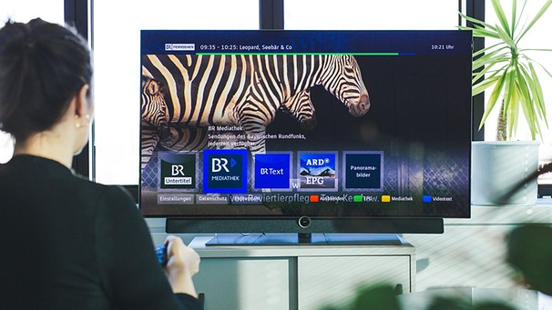 Hbbtv Zusatzdienst Via Internet Der Red Button Am Smart Tv