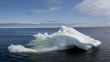 Eisscholle in der Hudson Bay | Bild: picture-alliance/dpa